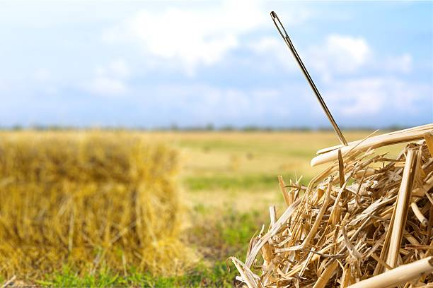 google search needle in the haystack As a result of the increasing popularity and dominance of the google search  a specific subject may be ungoogleable because its results are a needle in a haystack.