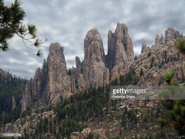 needles and spires along cathedral spires trail, south dakota - pinnacle rock formation stock-fotos und bilder