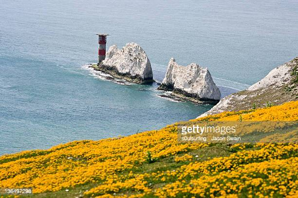 needles lighthouse - s0ulsurfing stock pictures, royalty-free photos & images