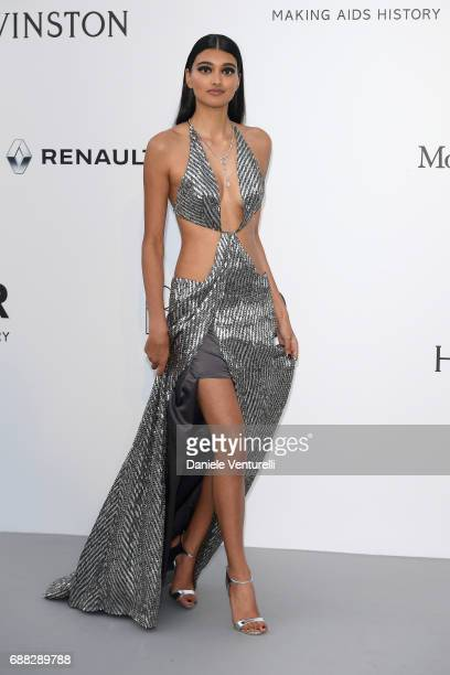 Neelam Gill arrives at the amfAR Gala Cannes 2017 at Hotel du CapEdenRoc on May 25 2017 in Cap d'Antibes France