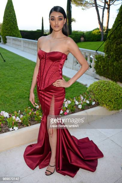 Neelam Gill arrives at the amfAR Gala Cannes 2018 at Hotel du CapEdenRoc on May 17 2018 in Cap d'Antibes France