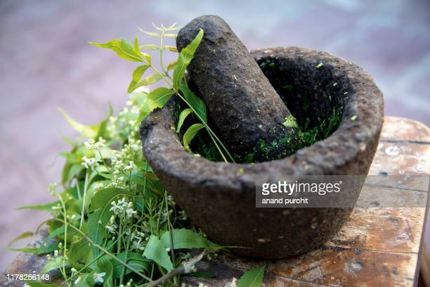 neem juice - azadirachta indica - crushed leaves stock pictures, royalty-free photos & images