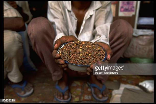 Neem tree seeds being sold by street vendors in Delhi India