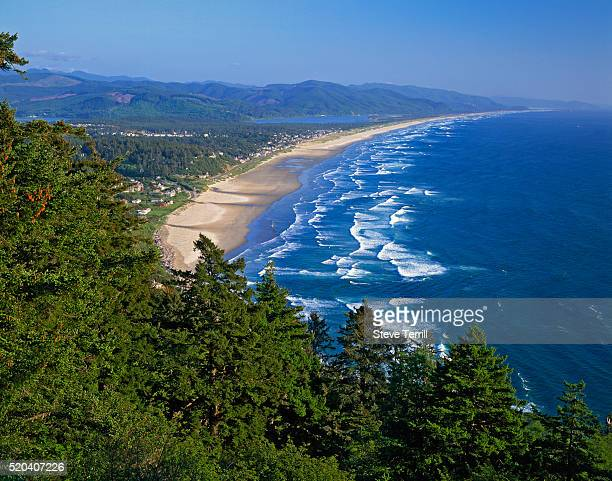 nehalem spit viewed from oswald west state park - state park stock pictures, royalty-free photos & images