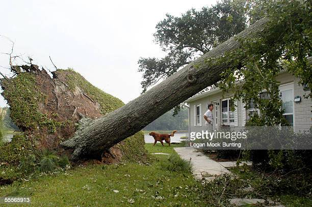 Neighbors check on one another after several trees fell from Hurricane Ophelia's forces on September 15 2005 in the Seagate area of Wilmington North...