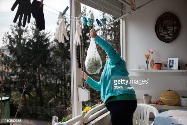 Neighbours send each other vegetables from one balcony to another during the Coronavirus lockdown crisis. Slovenia has confirmed 1,366 coronavirus...