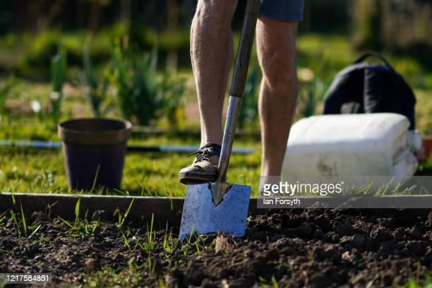 Neil Turpin tends to his allotment and follows government guidelines on social distancing and time restrictions on April 08, 2020 in Saltburn By The...
