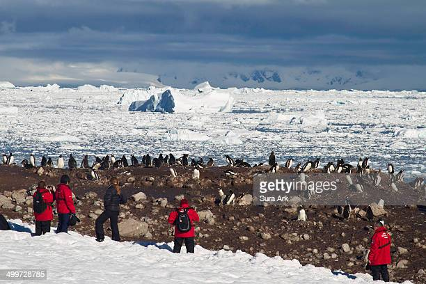 Neko Harbor is an inlet on the Antarctic Peninsula on Andvord Bay, situated on the west coast of Graham Land. Neko Harbor was discovered by Belgian...