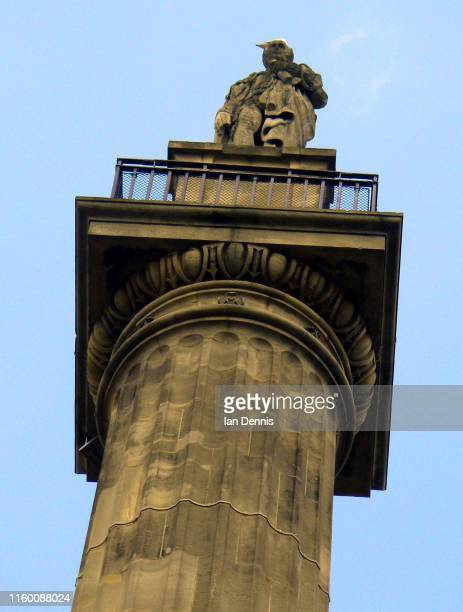 nelson column statue, trafalgar square, london, england - monument stock pictures, royalty-free photos & images