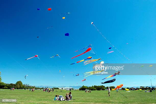 nelson kite festival, new zealand - nelson city new zealand stock pictures, royalty-free photos & images