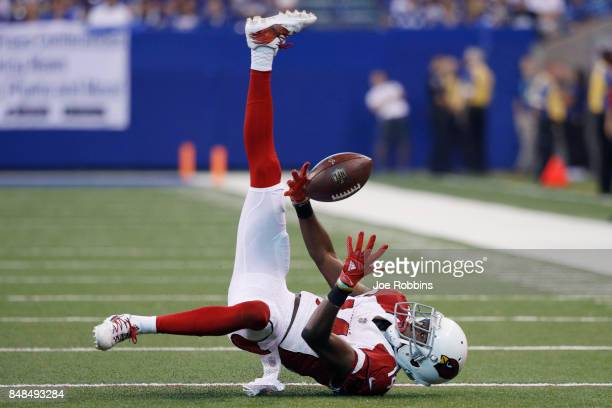 J Nelson of the Arizona Cardinals makes a juggling catch in the second quarter of a game against the Indianapolis Colts at Lucas Oil Stadium on...