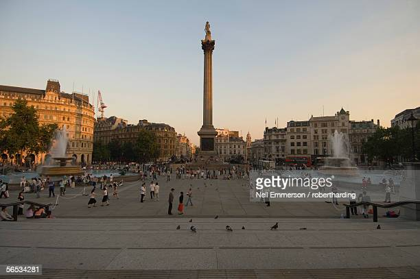 nelson's column and trafalgar square, london, england, united kingdom, europe - nelson's column stock photos and pictures