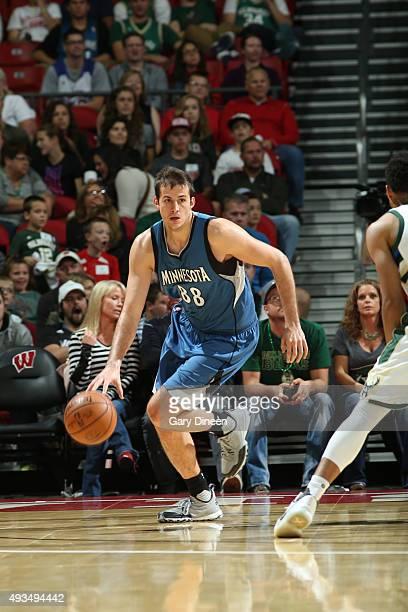 Nemanja Bjelica of the Minnesota Timberwolves dribbles the ball against the Milwaukee Bucks on October 20 2015 at the Kohl Center in Madison...