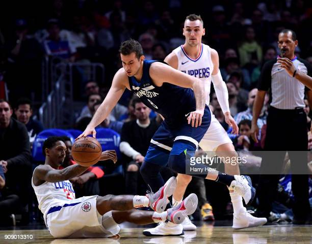 Nemanja Bjelica of the Minnesota Timberwolves takes the ball from Lou Williams of the LA Clippers as Sam Dekker looks on during the first half at...