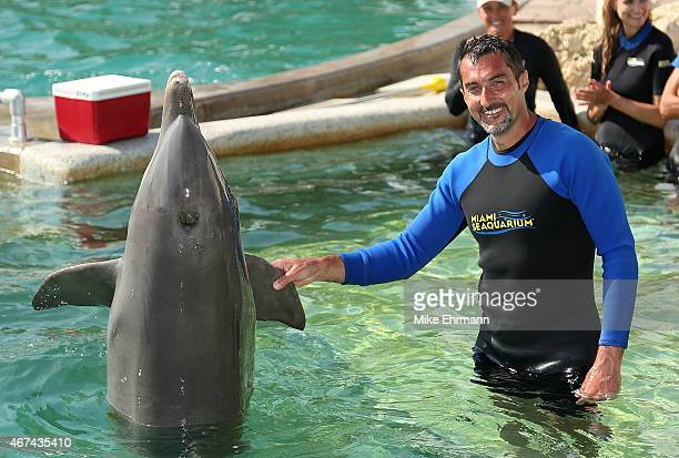 Nenad Zimonjic of Serbia swims with the dolphins at the Miami Seaquarium ahead of the Miami Open at Crandon Park Tennis Center on March 24 2015 in...
