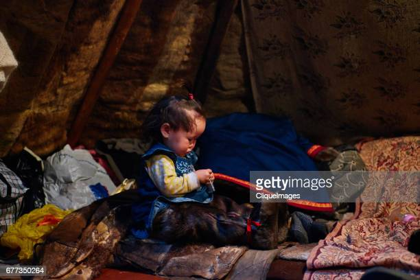 nenets girl in tent - cliqueimages - fotografias e filmes do acervo