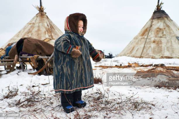 nenets kid in reindeer herders camp - cliqueimages stock pictures, royalty-free photos & images
