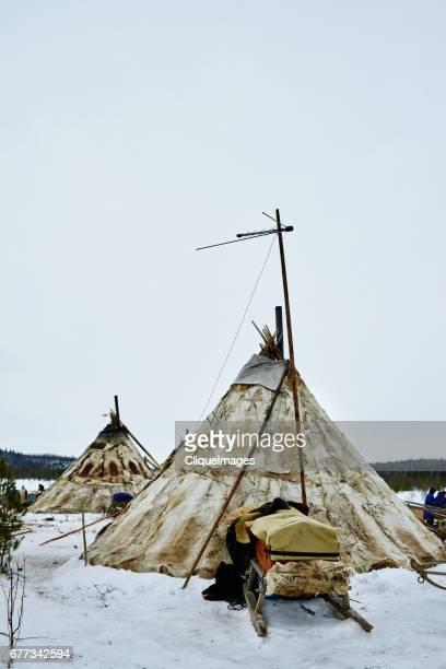 nenets nomadic camp - cliqueimages photos et images de collection