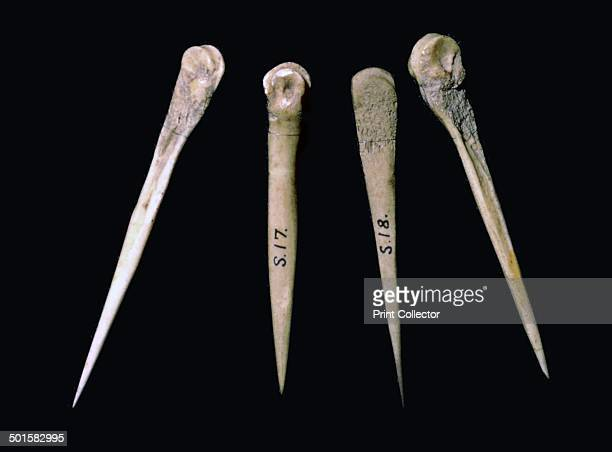 Neolithic bone pins from the Skara Brae Neolithic settlement From the Tankernges House Museum's collection Orkney