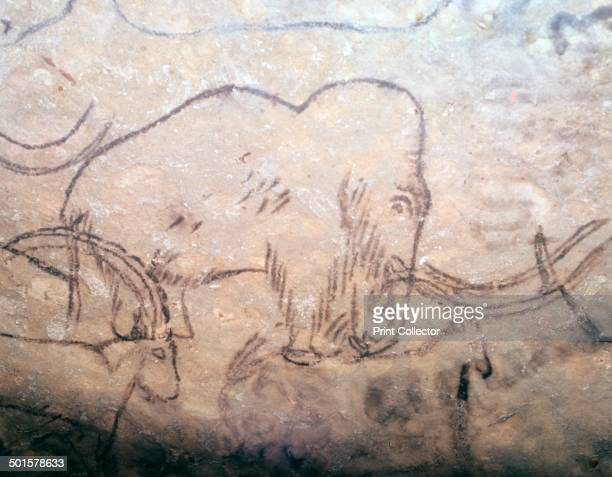 Neolithic cave-painting of mammoth and ibexes, from the ceiling of the Rouffignac Cave in Dordogne, France.