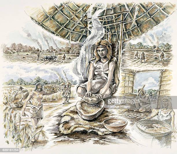 Neolithic Grain Production Reconstruction drawing of Grime's Graves Norfolk a large Neolithic flint mining complex Artist Peter Dunn