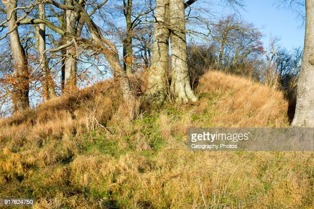 Neolithic long barrow in chalk down land countryside near East Kennett Wiltshire England UK