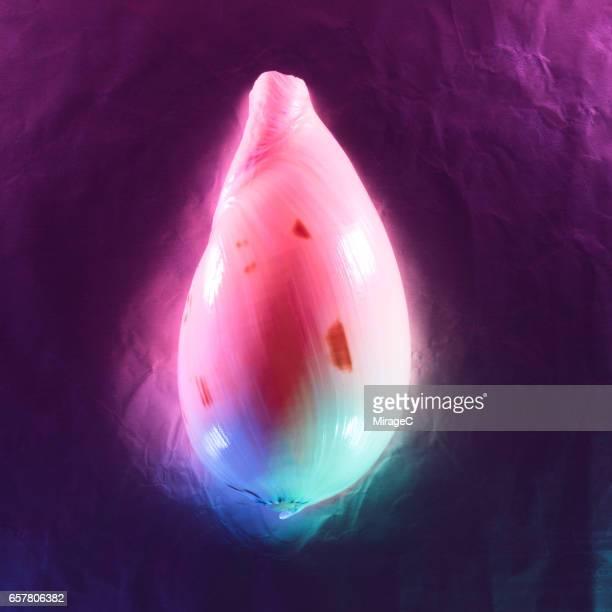 Neon Colored Seashell