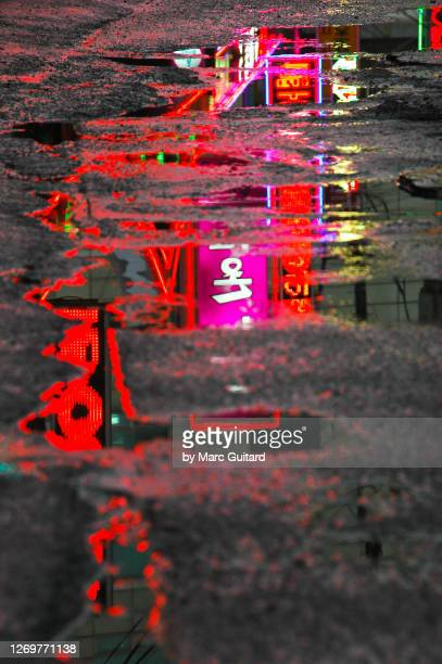 neon lights reflected in a puddle, seoul, south korea - south korea stock pictures, royalty-free photos & images