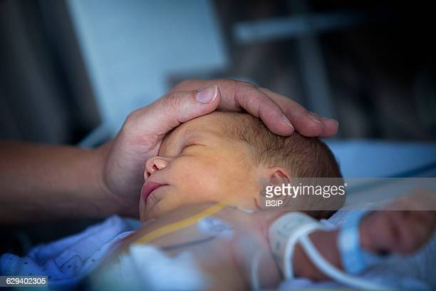 Neonatology service in a hospital in HauteSavoie France A fullterm baby showing heart beat irregularities is monitored