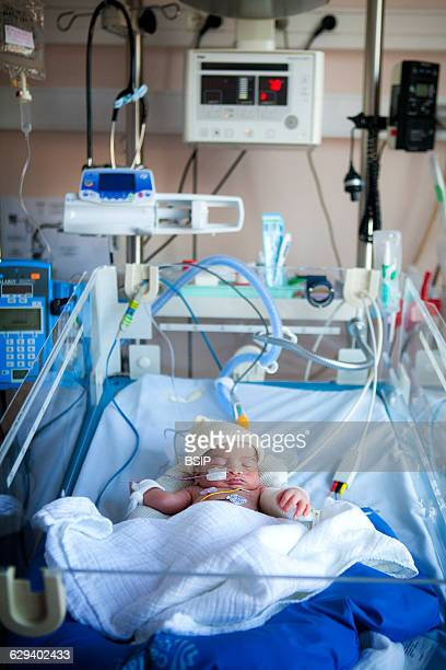 Neonatology service in a hospital in HauteSavoie France A newborn baby showing heart beat irregularities is monitored