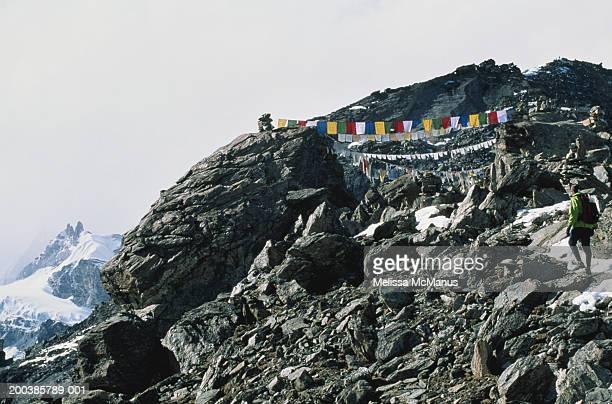 nepal, gokyo ri, man hiking on mountain, rear view - gokyo ri ストックフォトと画像