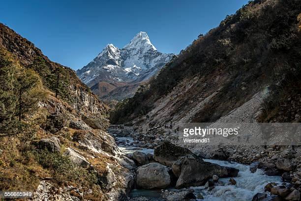 Nepal, Khumbu, Everest region, Pangboche, trekkers and yaks on the Everest Trail with Ama Dablam