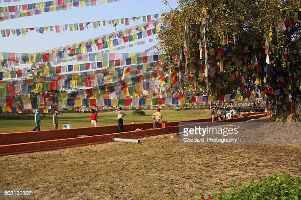 nepal: prayer flags at lumbini - lumbini nepal stock pictures, royalty-free photos & images