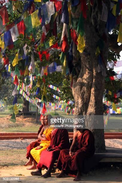 nepal: sermon at lumbini - lumbini nepal stock pictures, royalty-free photos & images
