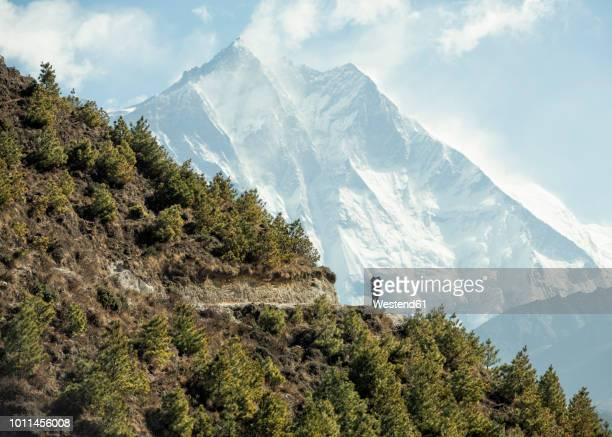 nepal, solo khumbu, everest, sagamartha national park, man looking at mount everest - nepalese army stock pictures, royalty-free photos & images