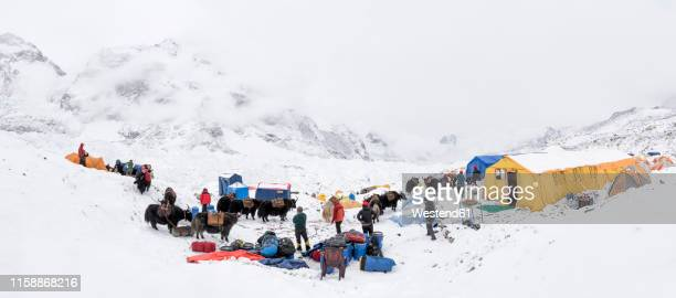 nepal, solo khumbu, mountaineers at everest base camp - base camp stock pictures, royalty-free photos & images