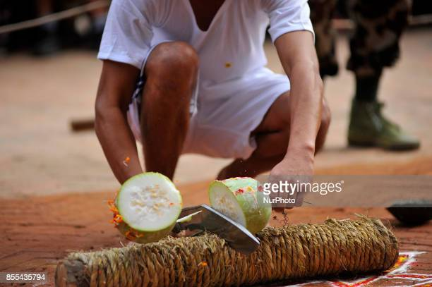 A Nepalese devotee cutting melon during the procession of Navami ninth day of Dashain Festival at Basantapur Durbar Square Kathmandu Nepal on Friday...