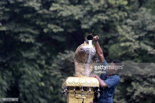 A Nepalese devotee pour milk over a golden statue of the Hindu snake god known as 'Nag' at Nagpokhari during Nag Panchami festival the festival to...