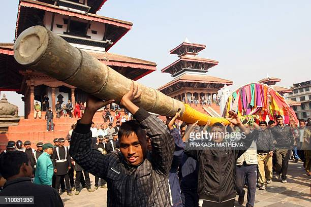 Nepalese devotees carry to erect the ceremonial bamboo pole know as a 'Chir' fringed with strips of cloth and representing good luck charms on the...