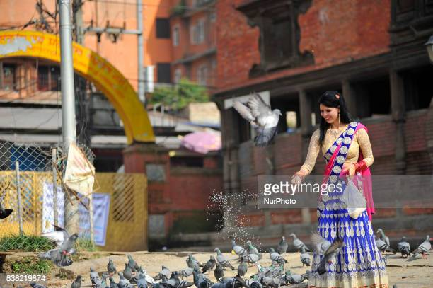 Nepalese devotees offering grains towards peigons after offering ritual prayer during Teej festival celebrations at Pashupatinath Temple Kathmandu...
