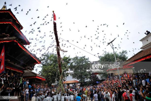 Nepalese devotees pulling rope to erecting the long wooden Log on the first day of Indra Jatra Festival at the premises of Basantapur Durbar Square...