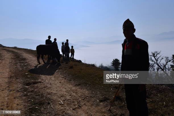 Nepalese people arrives along with thier Bull to bull fight during the Makar Sankranti or Maghe Sangranti festival at Taruka village Nuwakot 80km...