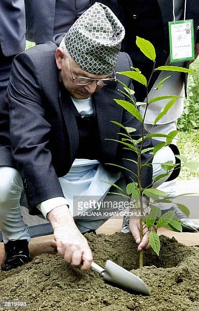 Nepalese Prime Minister Surya Bahadur Thapa plants a tree at a 1971 independence war martyrs ground's garden in Savar district nearby the Bangladeshi...