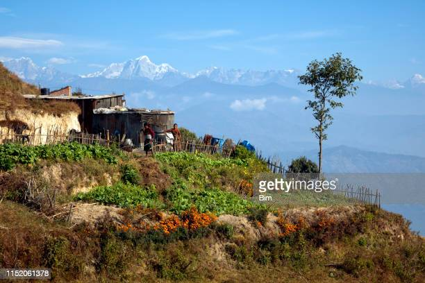 nepalese village near nagarkot, nepal - china east asia stock pictures, royalty-free photos & images