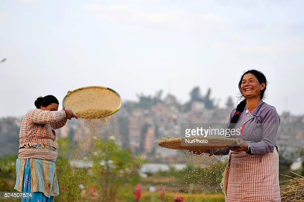 Nepalese woman separates rice grains from grains and the glumes or husks using a traditional winnowing method at outskirts of Kathmandu Nepal on 14...