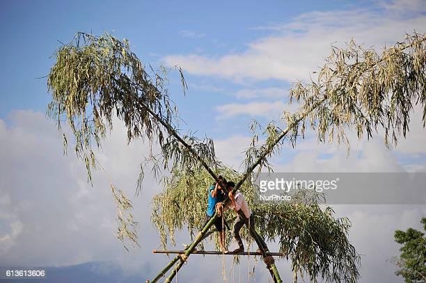 Nepalese youth making traditional bamboo ping or swing for dashain festival celebration at Sanepa Kathmandu Nepal on Sunday October 09 2016 Nepalese...