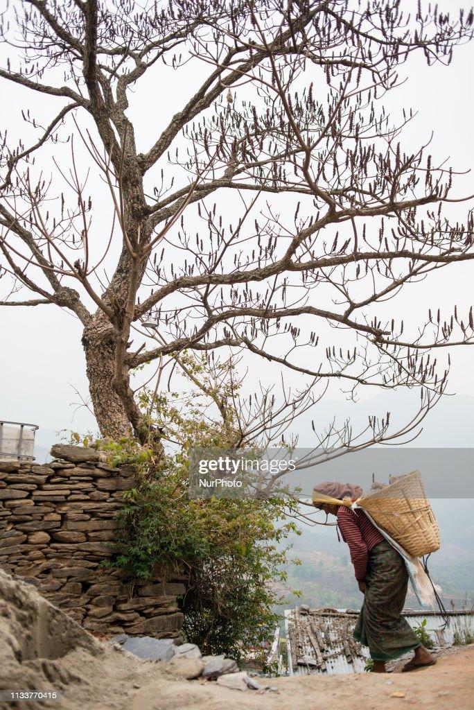 Daily Life In Bandipur : Foto di attualità