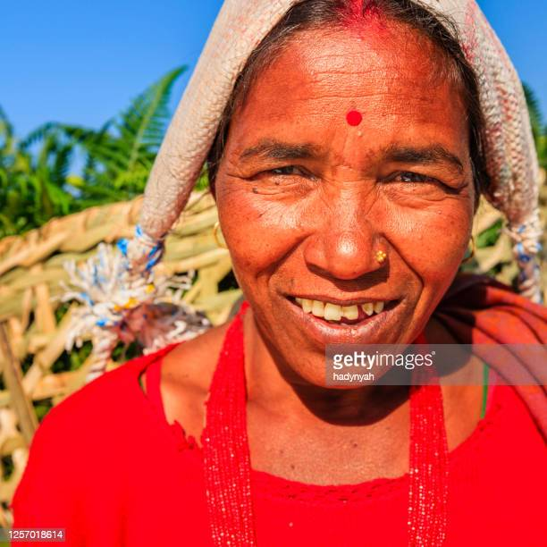 nepali woman carrying basket, annapurna range on background, pokhara, nepal - pokhara stock pictures, royalty-free photos & images
