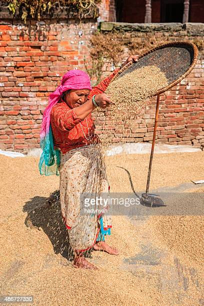 Nepali woman sifting a rice