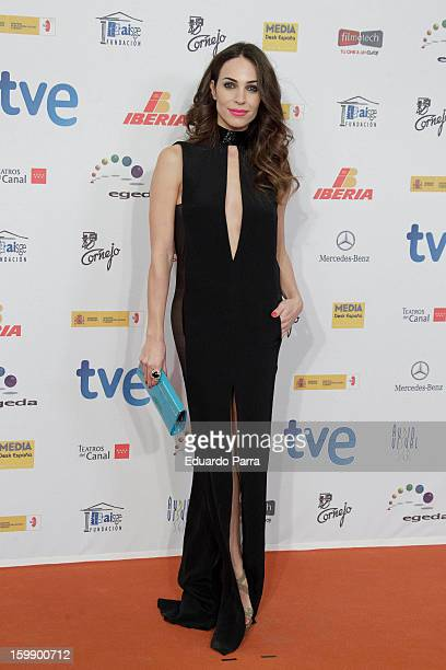 Nerea Garmendia attends Jose Maria Forque awards photocall at Canal theatre on January 22 2013 in Madrid Spain